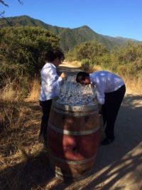 Wijnstudiereis Chili Veramonte uitgelicht