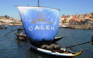 Calem Porto (16)