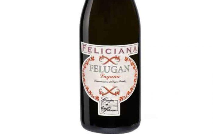 Welke wijn bij kreeft en asperges? Lugana Feliciana!