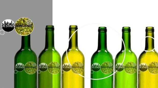 Wijnproeverij nieuwe jaargang Haagse Stadswijngaard