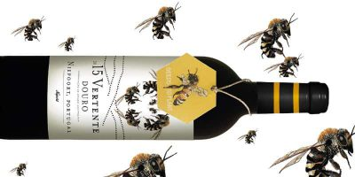 Vertente BEE Horizon Wines