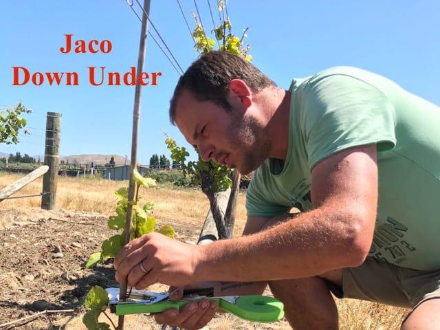 Jaco Down Under