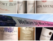 Bijzondere wijnen Wine Professional Monique van Kruining