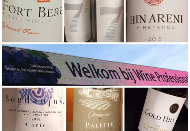 5 x BIJZONDERE wijnen op Wine Professional