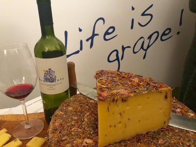Kroatische wijnen kaas en wijn