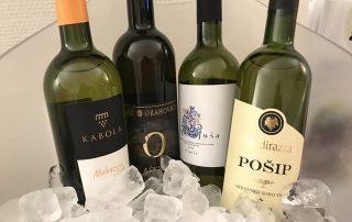 Kroatische wijnen wit uitgelicht