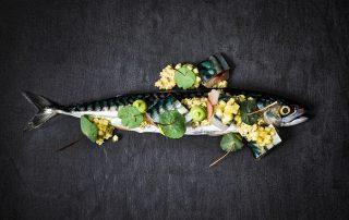 Bluespoon makreel gerecht (1)