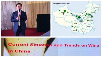 Demei Li presentatie masterclass uitgelicht