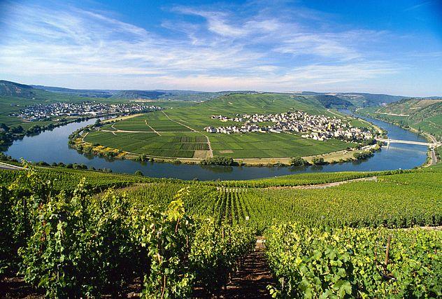 Proeverij Duitse wijnen: New Talents, No Riesling