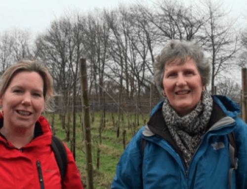 Crowdfunding wijnwandelgids Nederland