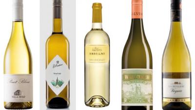 5 wijnen bij asperges uitgelicht