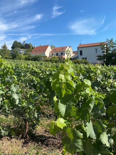 Leclerc Briant wijngaard en huis