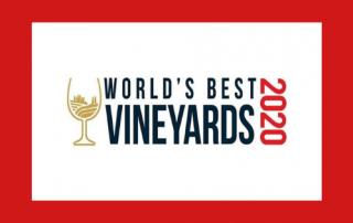 World's best 50 vineyards 2020 uitgelicht